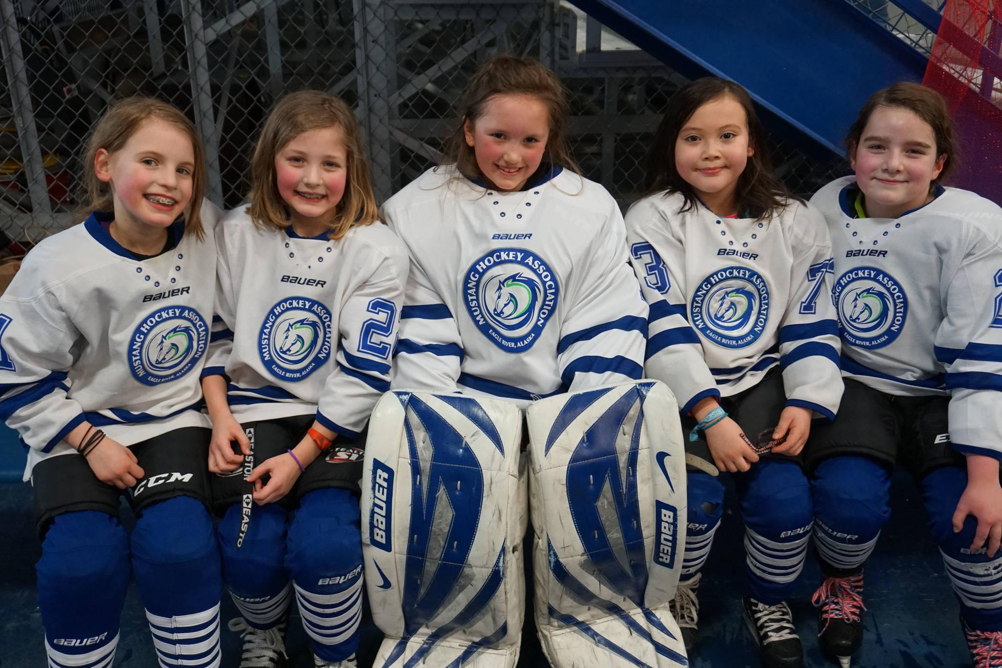 Mha Seeks New Name Logo For Girls Hockey Program The