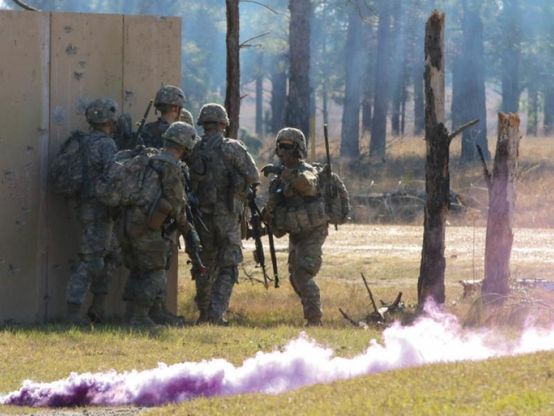 Louisiana army